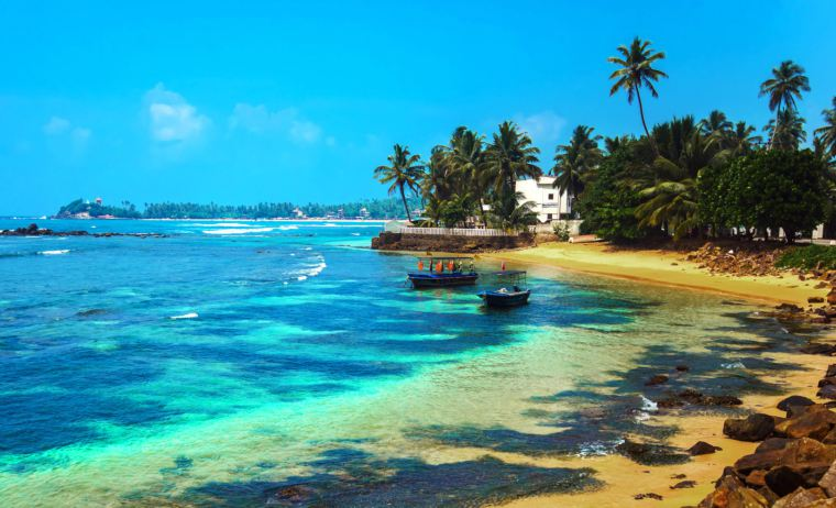 Відпочинок взимку на Шрі-Ланці